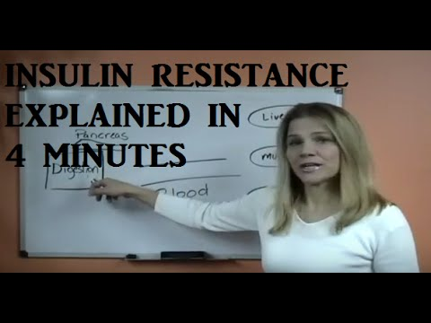 Video Insulin Resistance Explained