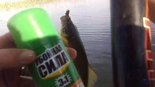 Где рыбалка в рузаевке
