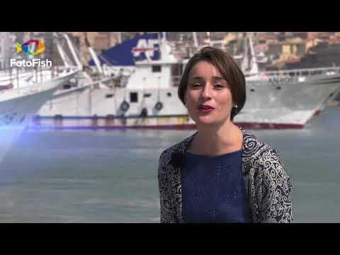 FOTOFISH 2018 - 04 (Fishing TV)