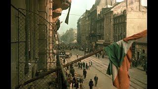 Tóth Eszter Zsófia: 1956 alulnézetből.  Magyar Katolikus Rádió, 2020. október 23.