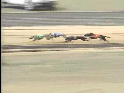 Race 52