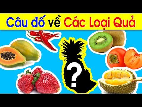 Câu đố về các loại quả