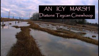 Cinestyle: An Icy Marsh ❄ Diatone Taycan Cinewhoop FPV Drone