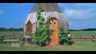 Gourd Growing Time Lapse Video At Meadowbrooke Gourds
