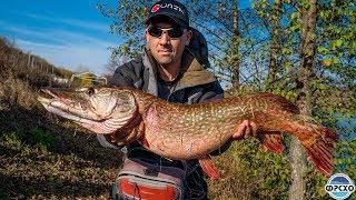 Форум рыбалка в харьковской и области на спиннинг
