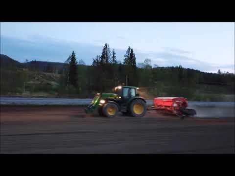 Narvik single menn