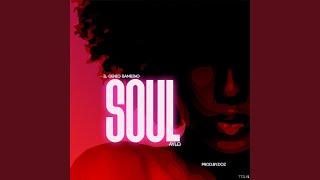 Soul (feat. AYLØ)
