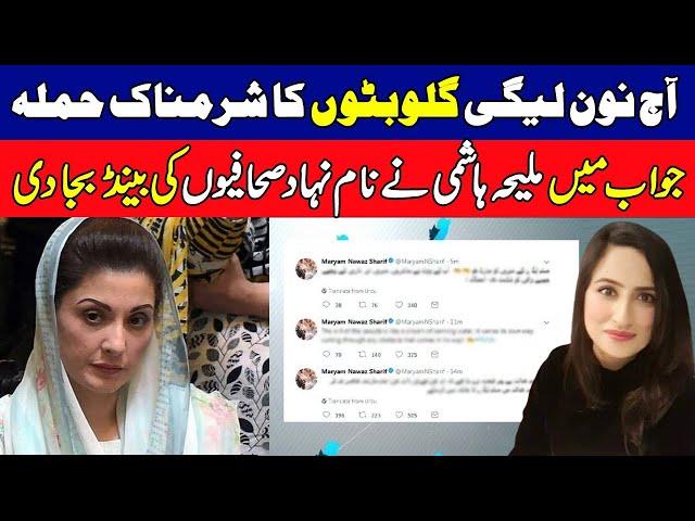 Maleeha Hashmey's Befitting Response to pro PMLN Journalists