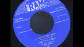 FIVE BUDDS - I GUESS IT'S ALL OVER NOW / I WANT HER BACK - RAMA 2 - 1953