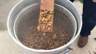 Boiled  Peanuts A.k.a Country Caviar!