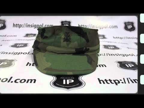 Gorras militares españolas: Insigpol