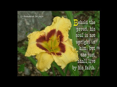 4th message in A Practical Study In The Book Of Habakkuk
