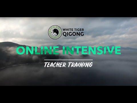 Online Qigong Teacher Training: 5 Element Level 1-4 - YouTube