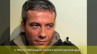 Кузнецов, Андрей Олегович - Биография