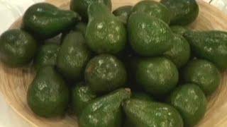 Авокадо - польза и вред. Как есть и готовить