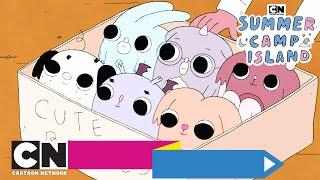 Летний лагерь | Крошки-монстры | Cartoon Network