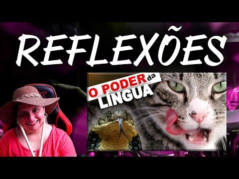 O PODER DA LNGUA | Reflexo #1