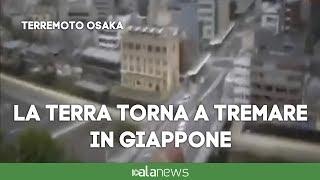 Terremoto Osaka: le immagini del sisma