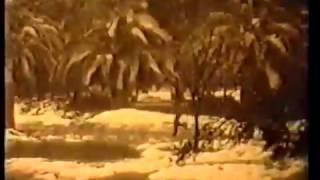 שלג באשדות יעקב - פברואר 1950(1 סרטונים)