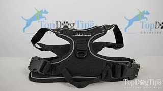 Rabitgoo No Pull Dog Harness Review