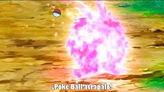 Venonat  - (Pokémon) - ASH CAPTURA A VENONAT Y GO A SCYTHER!? ANIME POKEMON