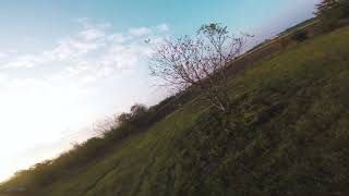 Tango2 -- flip/flop mode activated | FPV freestyle