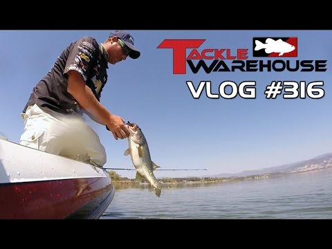 Fishing For Clear Lake Bass With Bryan Thrift Part 4 – Tackle Warehouse VLOG #316