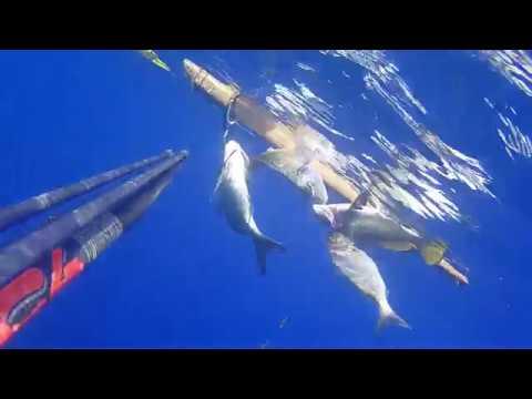 La pesca sul lago yangozero