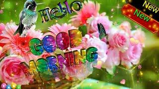 New Good Morning  Video 2020 /Subha Bakhair Status / Good Morning Whatsapp Status