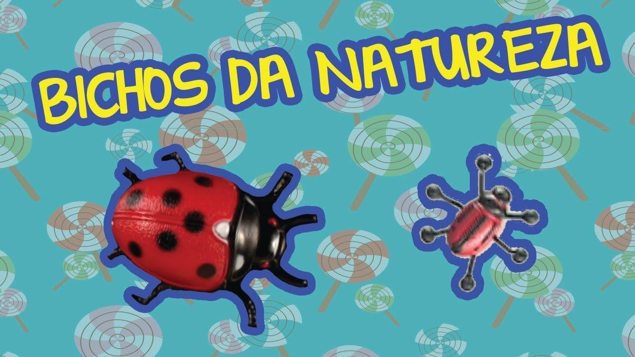 BICHOS DA NATUREZA ???? | Bebê Mais Natureza