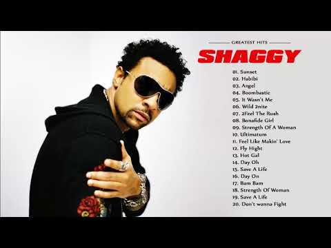 Download Shaggy Best Songs - Shaggy Grestest Hits Mp4 HD Video and MP3