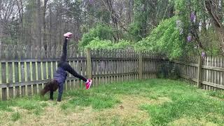 Ninja Crawls