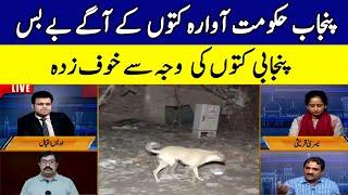 Punjab Hakomat Kutto ky agey bey bas   Bolta Lahore   12 July 2021   Lahore Rang