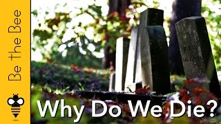 Why Do We Die?