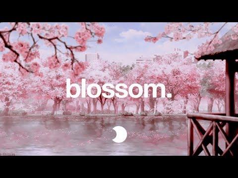 Blossom   Lofi HipHop