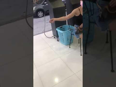 女子洗衣店吃東西遭勸阻怒回嗆 「叫黑社會來」自稱認識鳳梨鼠薯