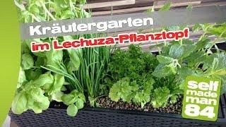"""Thermomix TM31 - Kräutergarten für die Küche im Lechuza """"BALCONERA Cottage 50"""" - selfmademan84"""