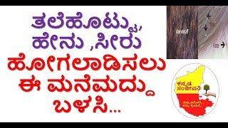 How to reduce Dandruff & head lice Naturally Kannada | Get rid of  Dandruff| Kannada Sanjeevani