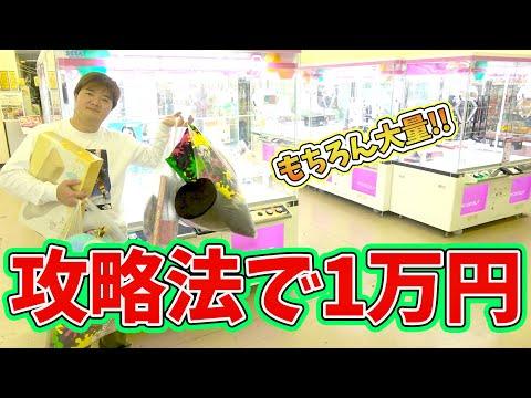 クレーンゲーム攻略使ったら1万円で何個取れるの?チャレンジ!