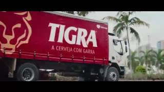 Cerveja Tigra - Fábrica Refriango