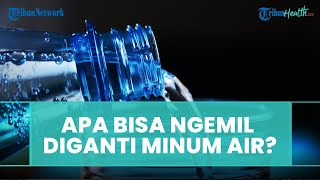 Bisakah Kita Mengganti Camilan dengan Minum Air, Ini Penjelasannya