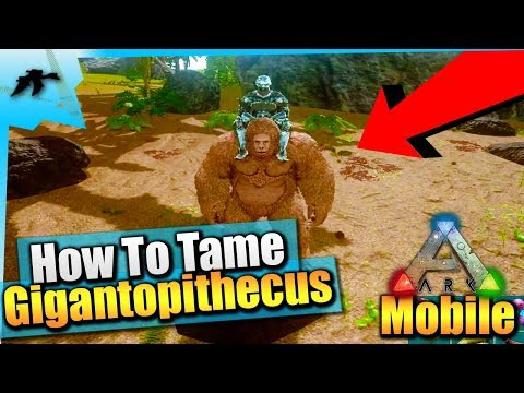 Ark Survival Evolved Mobile| How To Get/Farm Pelt/Dire Wolf Tame