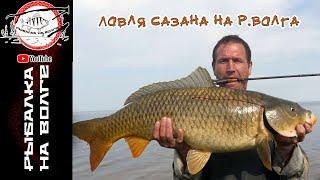 Базы на чебоксарское водохранилище рыбалка