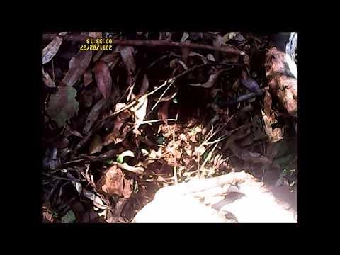 4ª trilha do carvao em Brochier parte 5