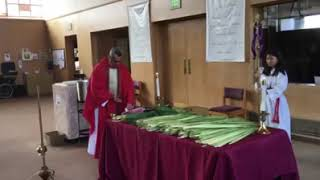 Apr. 4, 2020 - Blessing of the Palms (video)