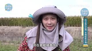Farmer Girl台中金牌農村遊樂趣