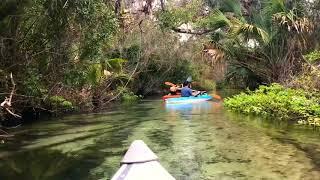 Juniper Springs Canoe Run