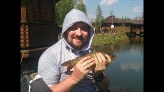 Отдых рыбалка в киеве на выходных