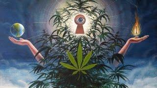 """Запрещенный фильм о марихуане. Такого Вы не узнаете нигде! """"Высшее Растение На Высоте Культуры"""""""