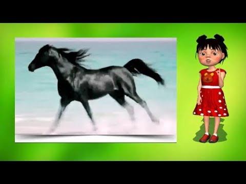 100 тысяч почему Почему лошади фыркают?